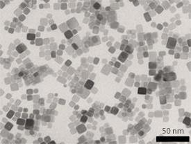 Transmission electron microscopy image of 10 nm-wide CeO2 nanocubes